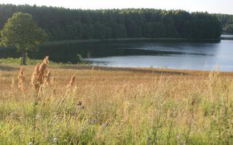 Jezioro Czarne, Niesiołowice.