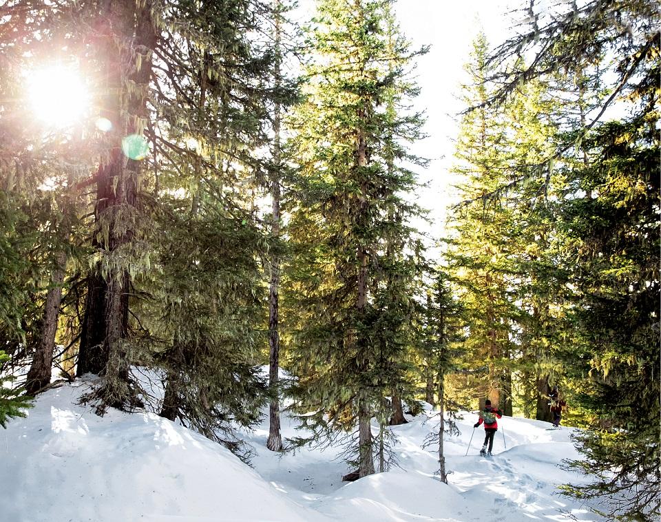 Bad Gastein, rakiety śnieżne w Wysokich Taurach